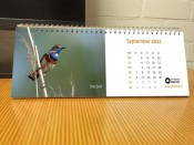 kalender-2022-2.jpg
