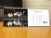 kalender-2022-3.jpg
